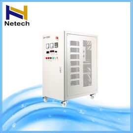 40g 100g Water Ozonator / High Output Ozone Generator For Swimming Pool